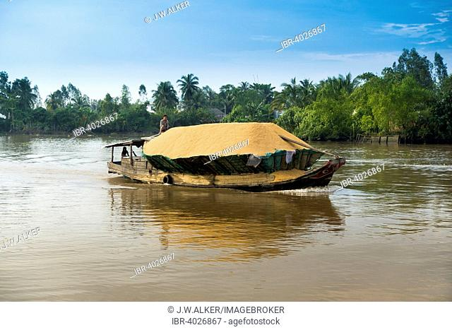 Traditional freighter loaded with rice on the Mekong, Nam Bo, Can Tho, Mekong Delta, Vietnam