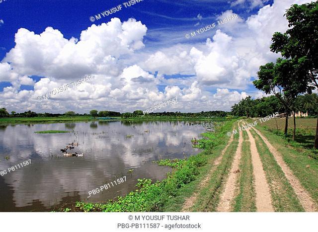 A village raod in Jessore district of Bangladesh