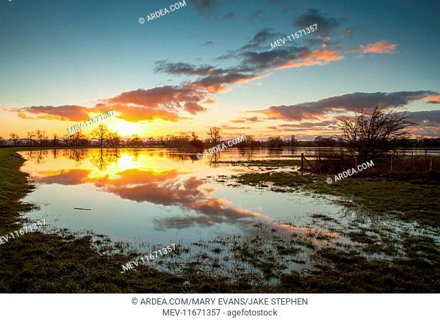 Flooded Farmland near River Severn