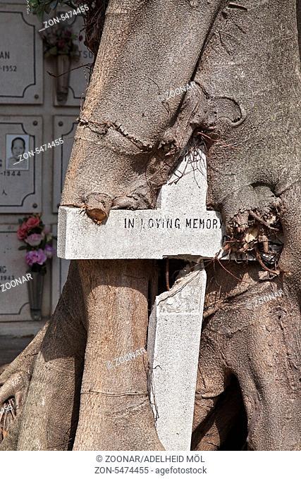 Friedhof des Erzengel Michael, Cemiterio Sao Miguel Arcanjo, größter katholischer Friedhof in Macao, China, Asien Cemetery Saint Michael Archangel