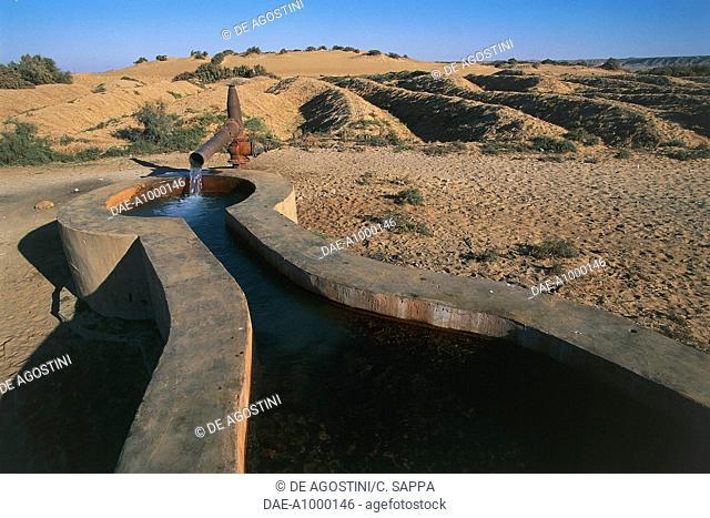 Irrigation system, Bahariya oasis, Libyan desert, Egypt