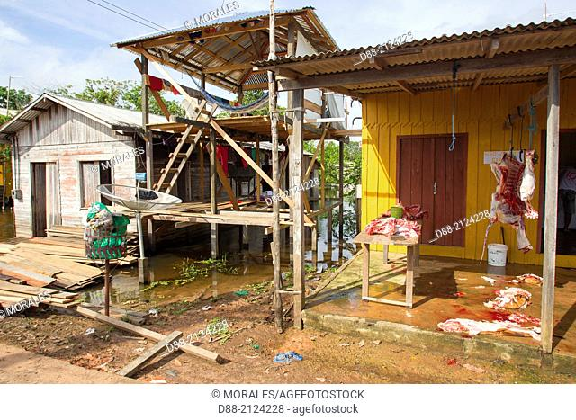 South America,Brazil,Amazonas state,Manaus,open butchery in a village
