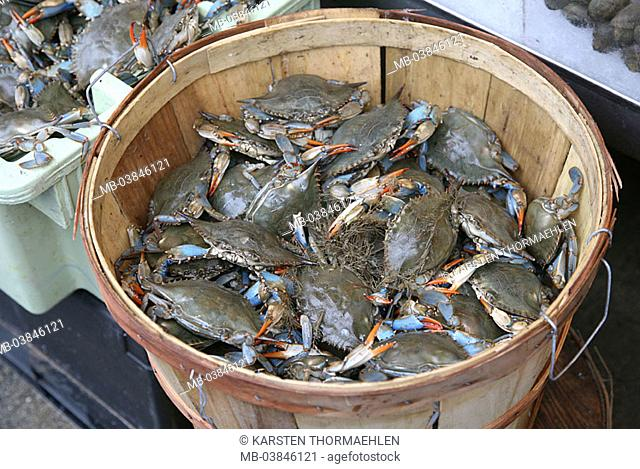 Fish-market, receptacles, seafood, crabs, fisher-harbor, harbor, market, baskets, sea-bulls, crustaceans, living, catch-newly, newly, symbol, food, Seafood