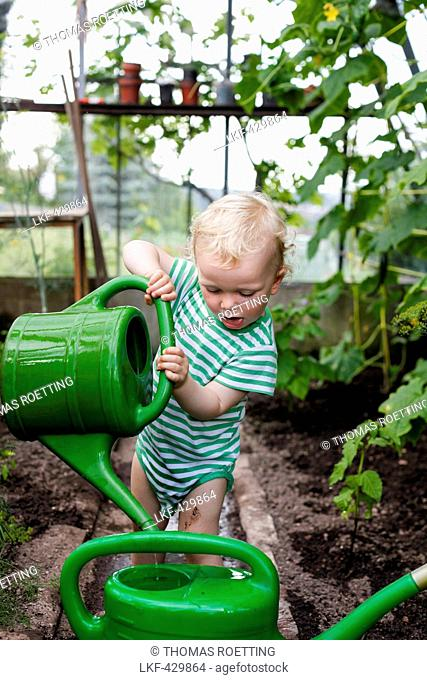 Boy (2 years) with watering pots in a greenhouse, Freital, Saxony, Germany