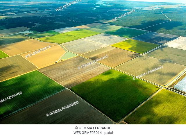 Aerial view of green fields cultivated in Queensland, Australia