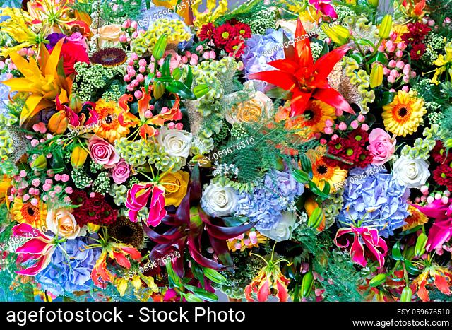 Abstract background with all kinds of colorful flowers