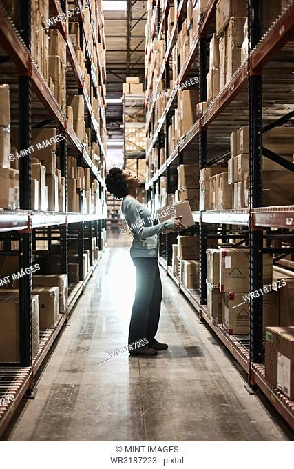 African American female warehouse worker checking inventory and carrying a box in an aisle of products stored in cardboard boxes