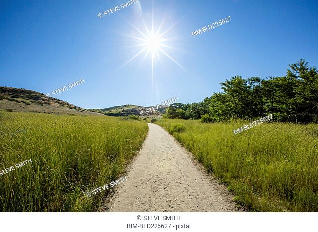 Dirt path in sunny rolling landscape