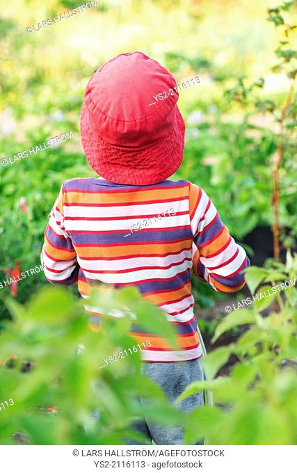 Tranquil summer scene. Young girl standing in garden, watching plants and flowers