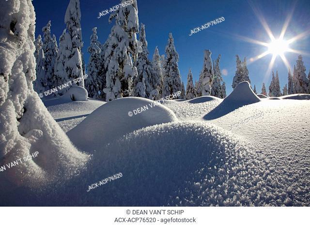 Snowshoeing, fresh snow, sunshine, ice and frost crystals, Dakota Ridge, Sechelt, Sunshine Coast, B.C