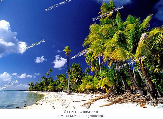 French Polynesia, Tetiaroa island, a coral sand beach
