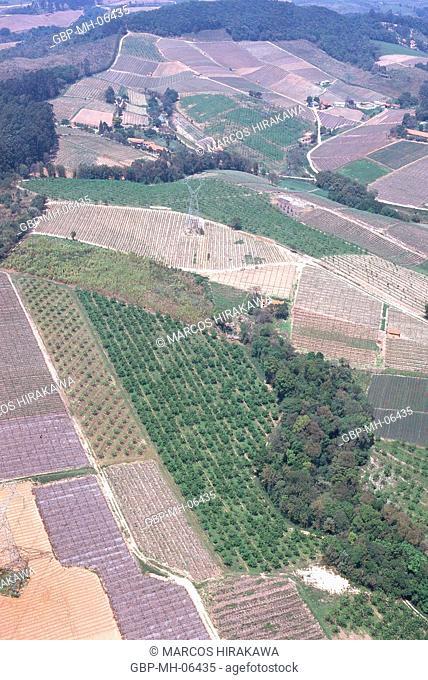 Aerial view, Plantations, Hortolandia, Sao Paulo, Brazil