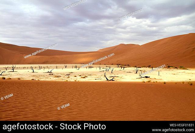 Namibia, ¶ÿSossusvlei pan surrounded by desert dunes