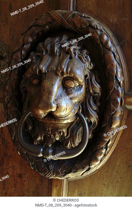 Close-up of a lion door knocker on a door