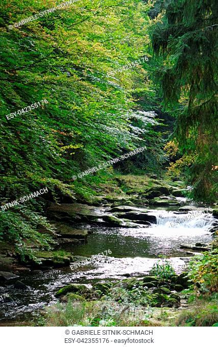 National Park Giant Mountains. Poland, Karkonosze
