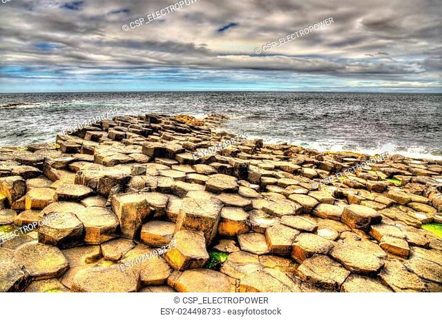 Basalt-tiled seashore of the Giant's Causeway - Northern Ireland