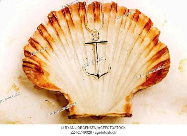 Retro navy anchor sitting inside an open nostalgic clam shell case. Beach marine artwork