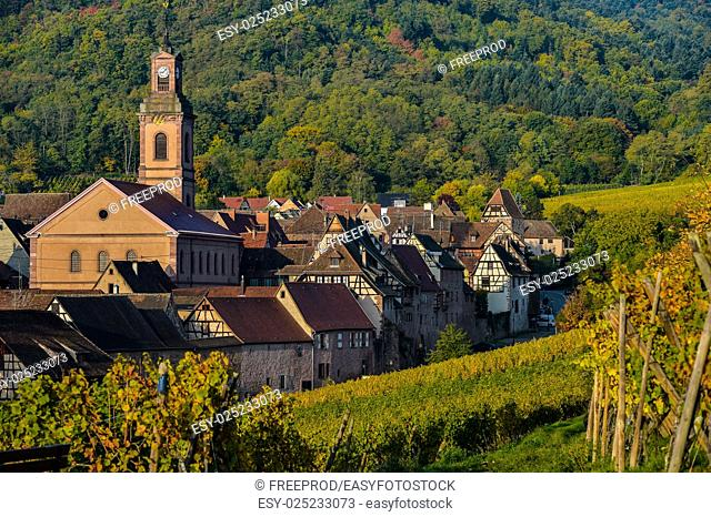 France, Haut-Rhin, 68, Alsace Wine Route, Kaysersberg, the vineyard, the Sainte-Croix church and the keep of the imperial castle