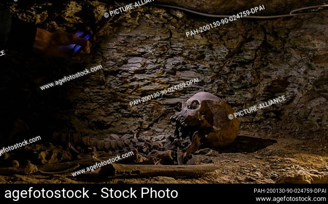 30 January 2020, Egypt, Minya: Human bones are seen inside a communal tomb, one of three newly discovered tombs of the high priests of ancient Egyptian deity...