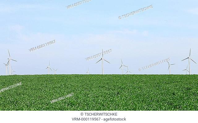 Wind turbines in a field not far from Frankfurt, or, East Brandenburg, Brandenburg, Germany, Europe