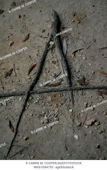 Nature made the letter A for everyone to see out of tree roots