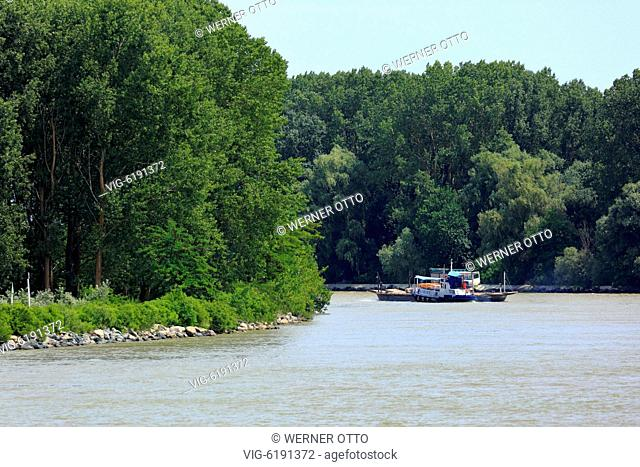 Danube navigation, freighter on the Saint George Branch of the Danube near Tulcea, river landscape, river bend, woodland, Romania, Tulcea County, Dobrudja