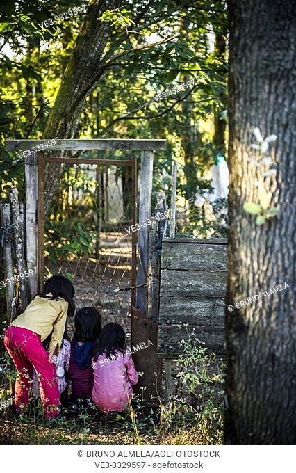 Curious children looking through a door in a farm. France