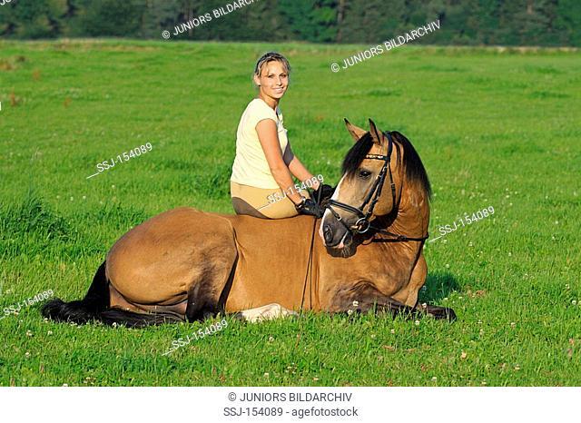 woman sitting on Lusitano horse
