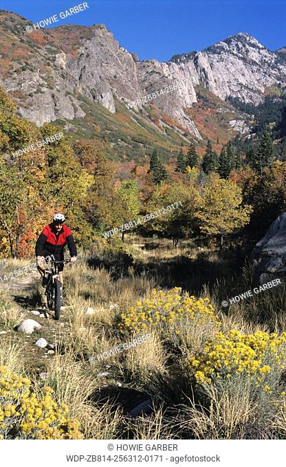 Steve Mountain biking in Bells Canyon, Wasatch-Cache National Forest, Utah