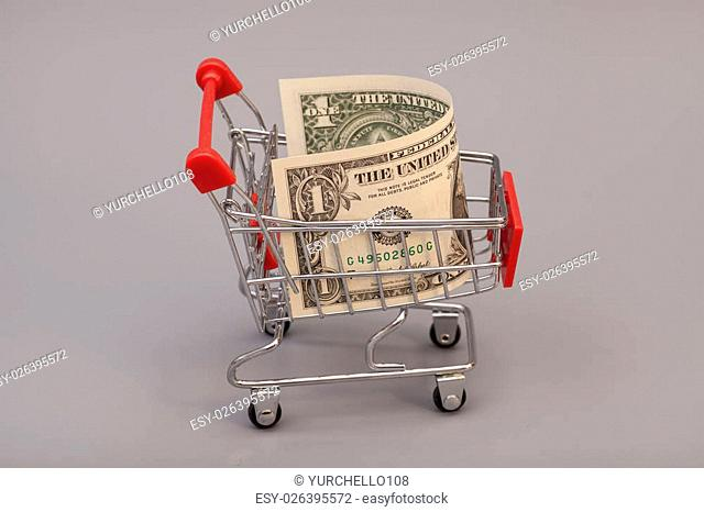 Shopping cart with one dollars on gray background