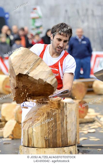 'Aizkolari' man cutting log with an axe, demonstration of 'aizkora' (traditional Basque sport). Mondragon, Euskadi, Spain