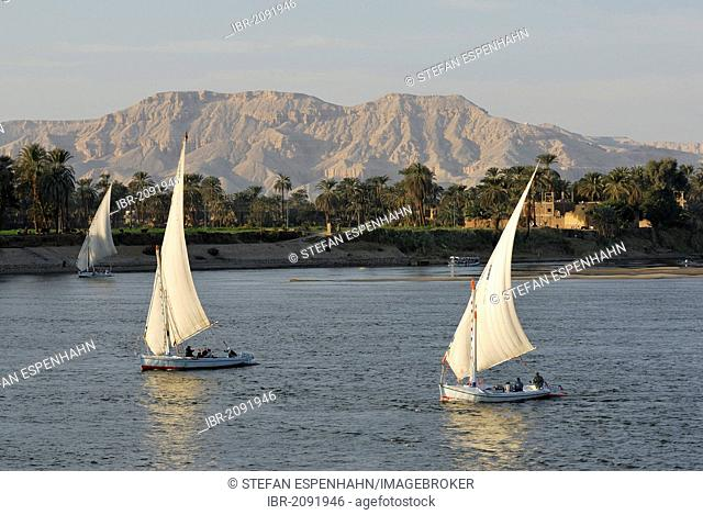 Feluccas on the Nile, Luxor, Nile Valley, Egypt, Africa