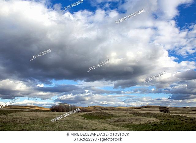 Storm clouds threaten rain over an agrilctural landscape