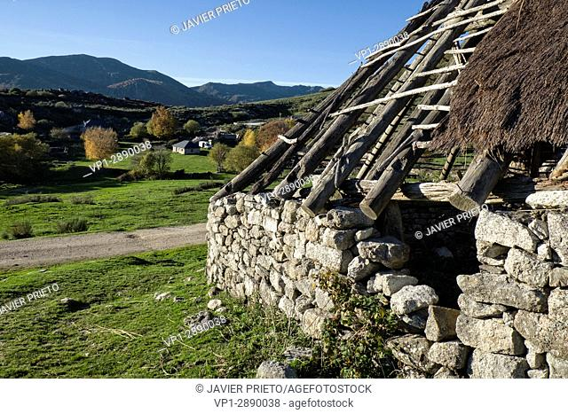 Exposed structure of an old abandoned palloza in the high pastures of Campo del Agua. The Ancares. Lion. Castilla y León. Spain