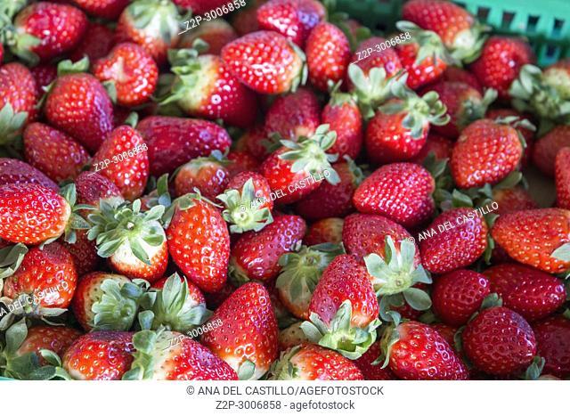 Strawberries for sale, Bolhao municipal market, Porto, Portugal
