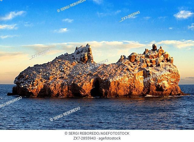 The guano coated sea cliffs at Los Islotes sea lion rookery, Sea of Cortez, Baja California, Mexico. Californian Sea Lion Zalophus californianus Mexico Sea of...