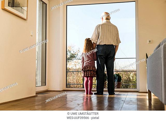 Grandfather and granddaughter looking out of window, rear view