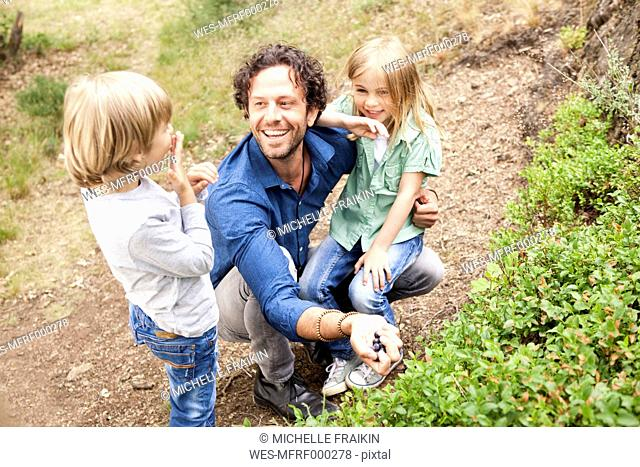 Father with two children collecting blueberries in the nature