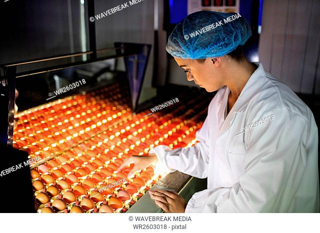Female staff examining eggs in lighting control quality