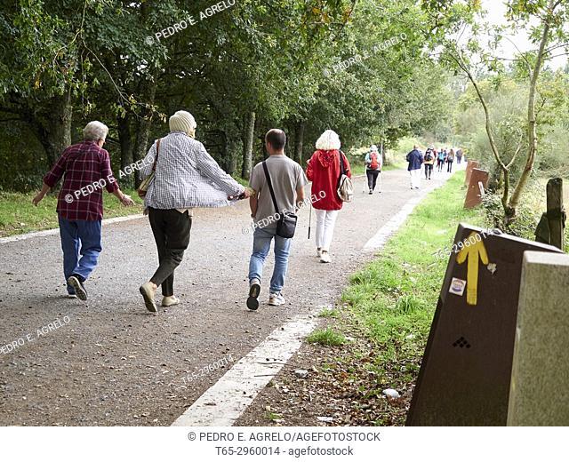 Pilgrims walking in the direction of Santiago de Compostela, along the French Route of the Camino de Santiago in Palas de Rei, Lugo. Galicia, Spain