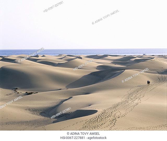 Canary Islands. Gran Canaria. Maspalomas. Sand dunes