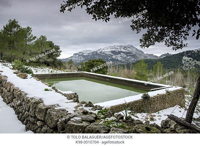estanque de Binifaldó y Puig de Roig nevado, finca pública de Binifaldó, Escorca, Paraje natural de la Serra de Tramuntana, Mallorca, balearic islands, Spain