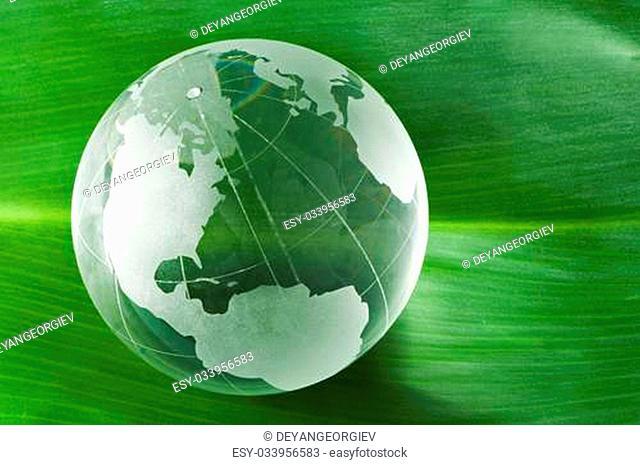 Glass globe on green leaf