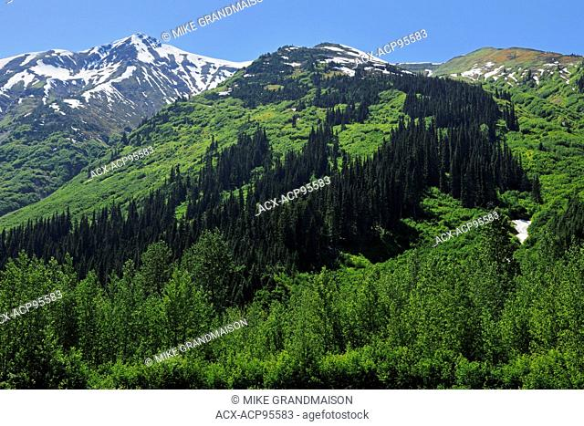 Coast Mountains on the Stewart-Cassiar Highway, Bell ll, British Columbia, Canada