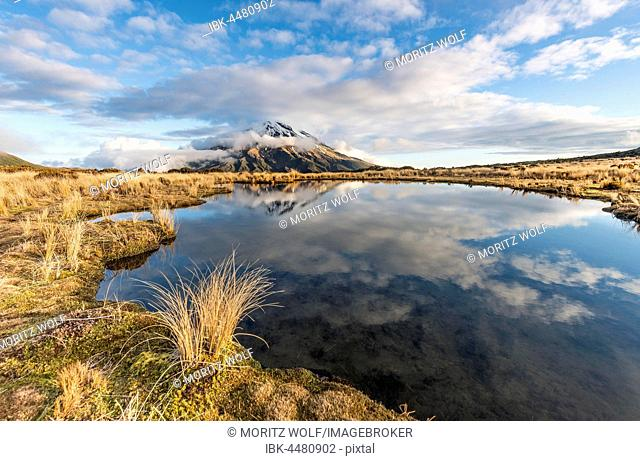 Reflection in Pouakai Tarn, stratovolcano Mount Taranaki or Mount Egmont, Egmont National Park, Taranaki, New Zealand