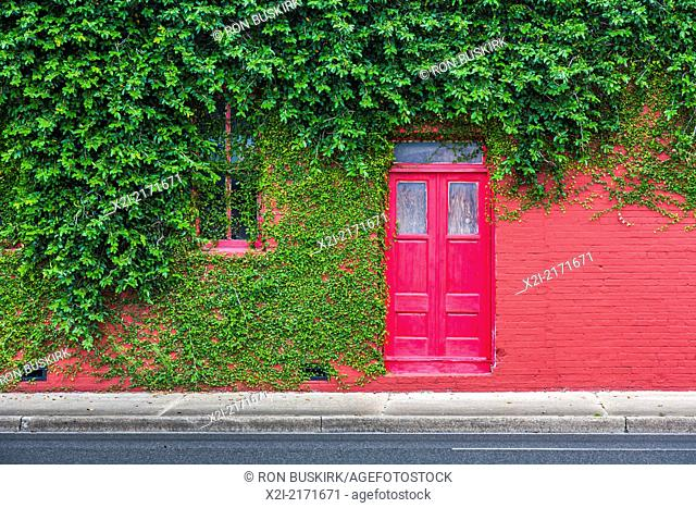 Ivy covered bright red brick wall with bright red door in downtown Green Cove Springs, Florida