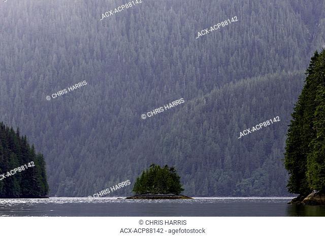 British Columbia, Canada, Central BC coast, Great Bear Rainforest