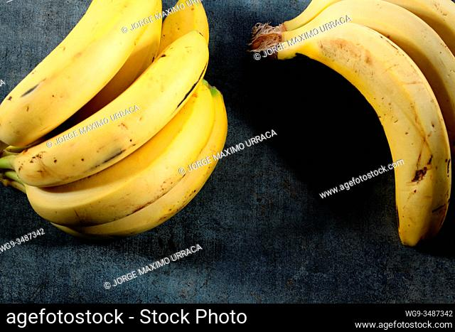 Canary bananas on gray background