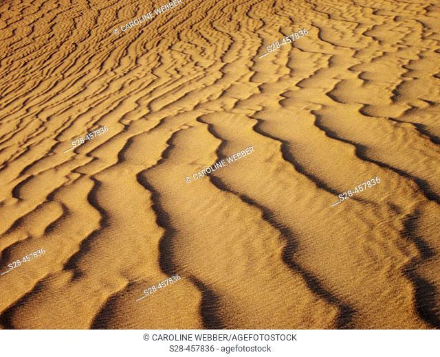 Sand patterns, Death Valley dunes, CA, USA