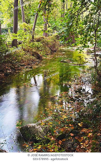 Dulce river, Aragosa. Guadalajara province, Castilla-La Mancha, Spain